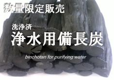 限定販売浄水用備長炭
