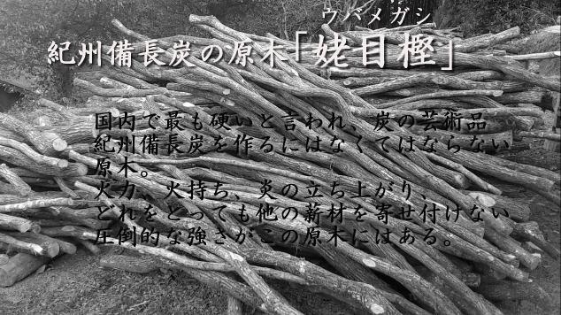 紀州備長炭の原木ウバメガシの薪